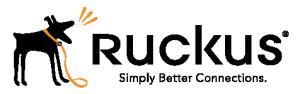 DataSwift are a Ruckus Big Dog Partner